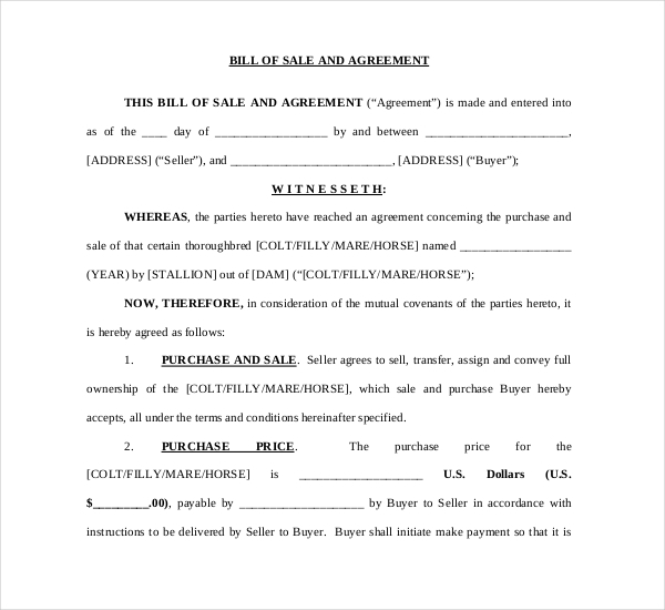 Horse Bill Of Sale And Agreement Free Download  Free Horse Bill Of Sale