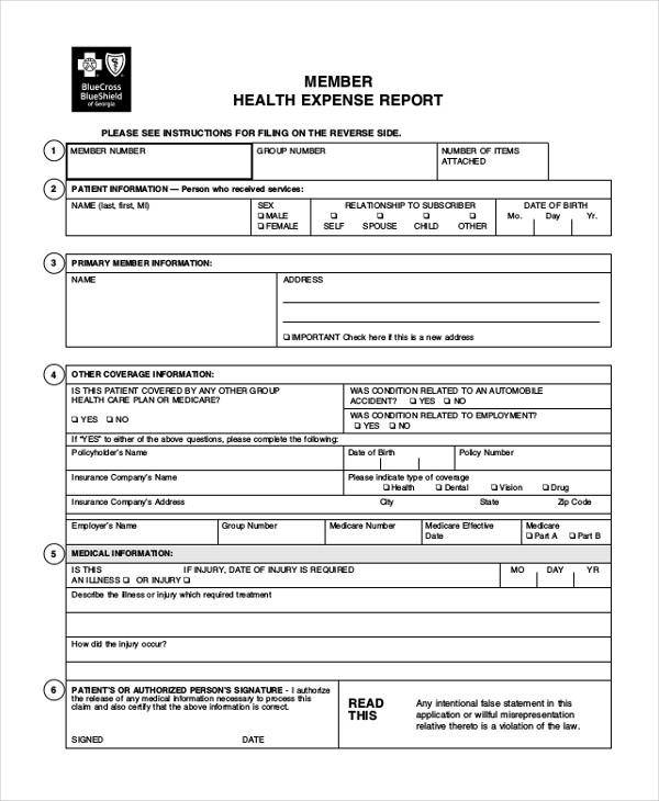 MEMBER-HEALTH-EXPENSE-REPORT Company Expense Report Excel on project management, forms template, small business,