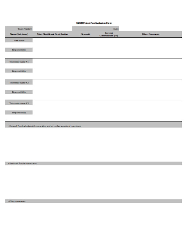 project peer evaluation form