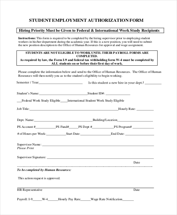 Sample Employment Authorization Form   Free Documents In Word Pdf