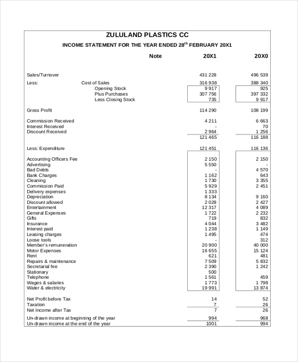 Sample Income Statement Form   Free Documents In Pdf Xls