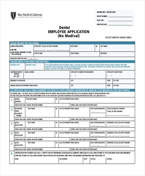 sample employee application form 11 free documents in pdf