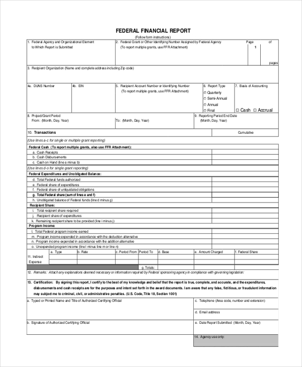 financial report form