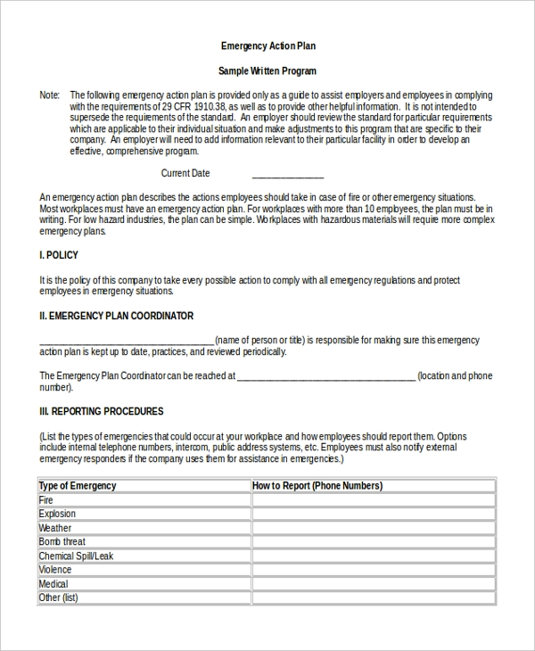 Sample Action Plan Form   Free Documents In Doc Pdf