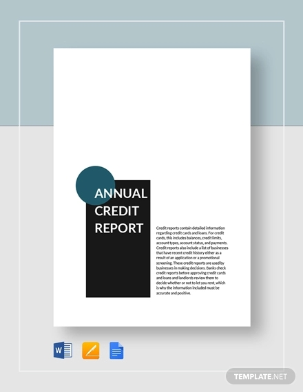 annual credit report 1