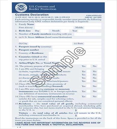 Us Custom Declaration Form Dolapgnetband