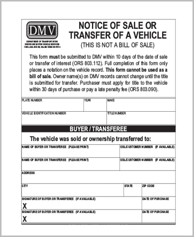 Dmv Release Of Liability Form - 5+ Free Documents In Word, Pdf