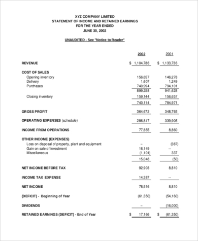 profit and loss statement for service business