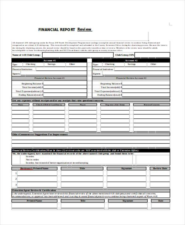 financial review form in doc