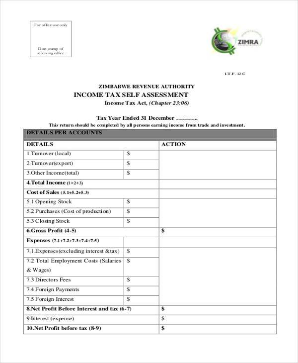 Sample Blank Assessment Forms   Free Documents In Word Pdf