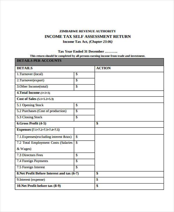 7+ Income Assessment Form Samples - Free Sample, Example Format