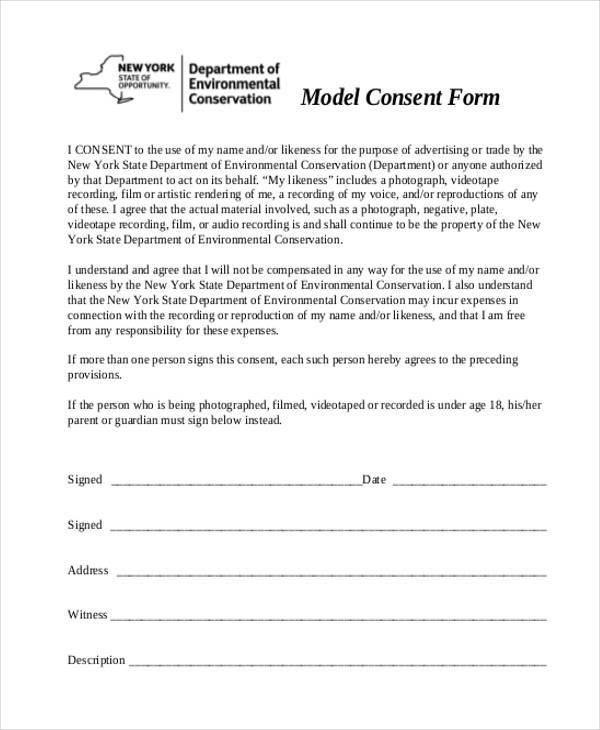 model consent form in pdf