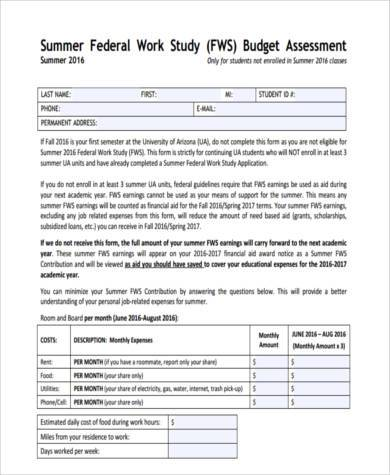 personal budget assessment form