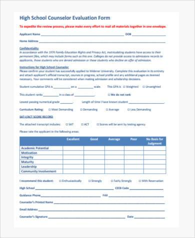 school counseling evaluation form