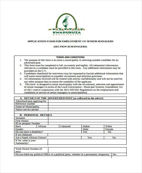 senior manager employment application form