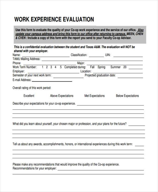 work experience evaluation form