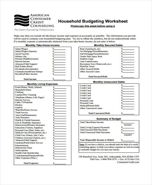 annual household budget form