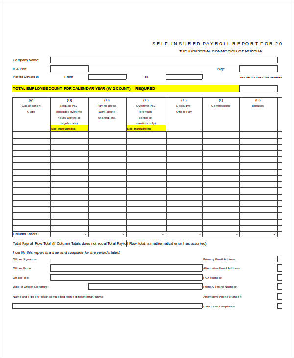 example payroll report form