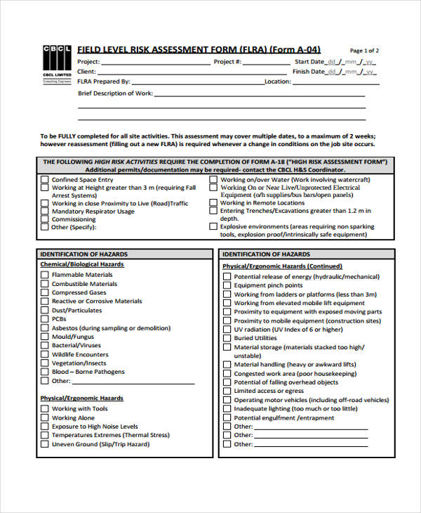 field level risk assessment form