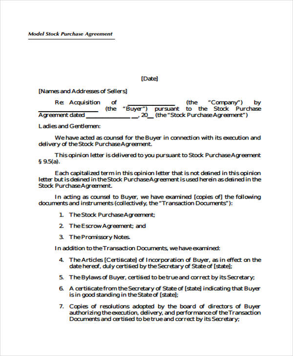 model stock purchase agreement form2