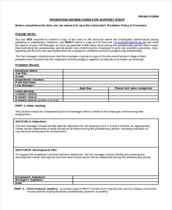 probation paper review form