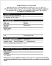 work experience application form1