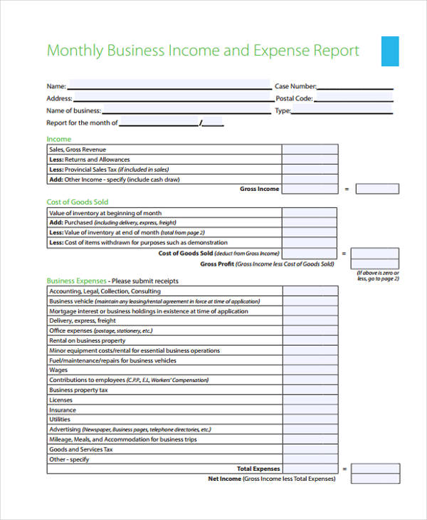 monthly business expense report form1