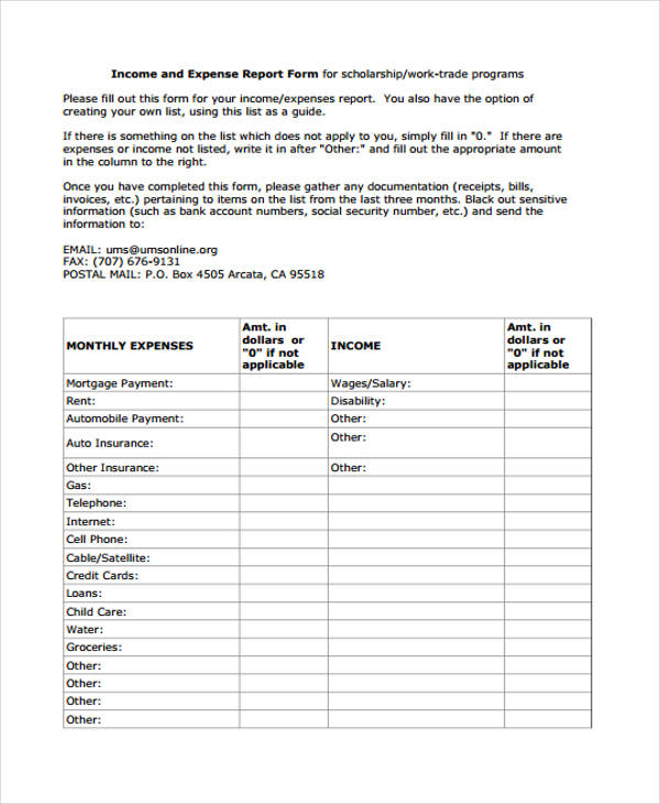 Monthly Income And Expense Report Form  Printable Expense Report