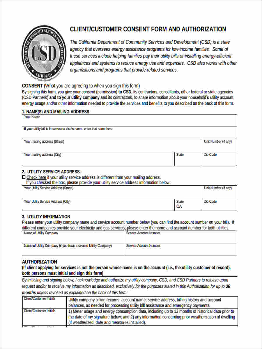 authorisation client consent