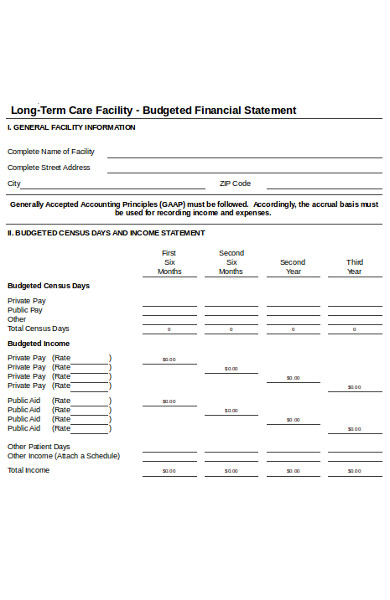 budgeted financial statement form