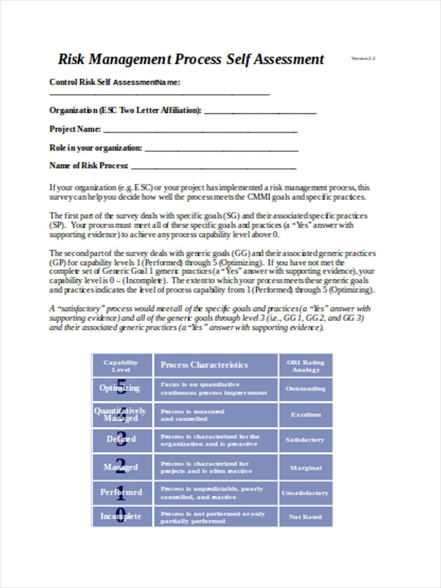 4 control risk assessment forms free sample example for Risk control self assessment template