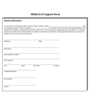 professional affidavit of support form