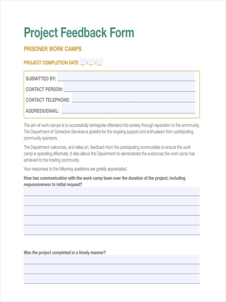 free 10  project feedback forms in pdf