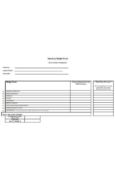 summary budget form