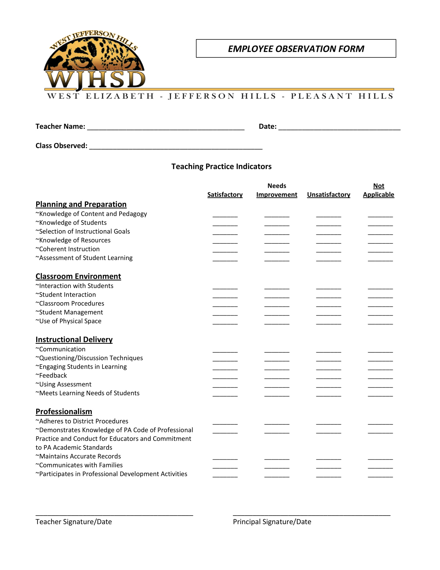 4+ Employee Observation Forms - PDF, DOC