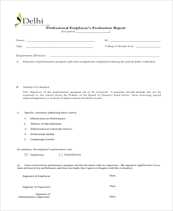 professional employees evaluation report