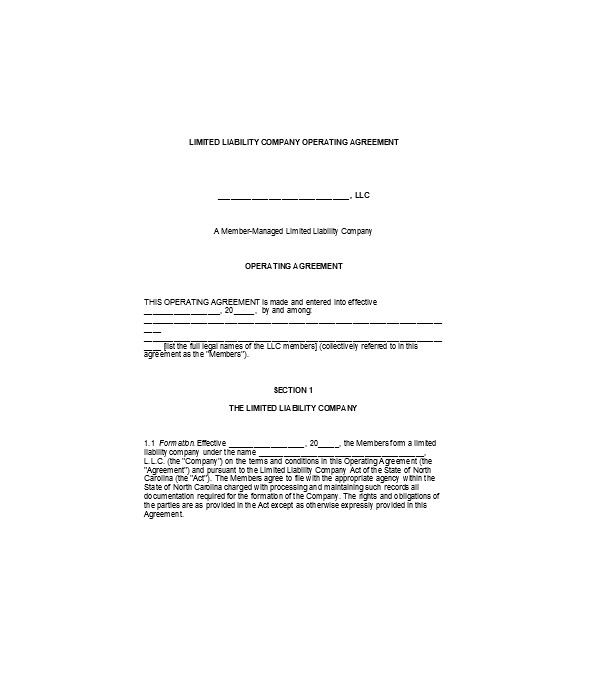 limited liability company agreement contract form