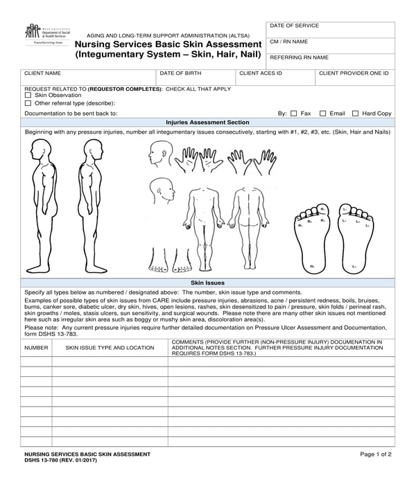 nursing services basic skin assessment form
