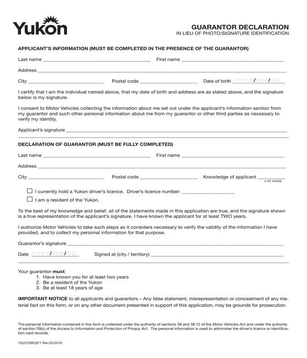guarantor declaration form