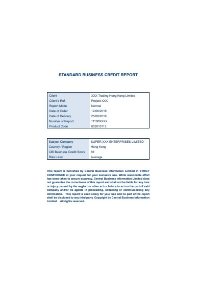 standard business credit report