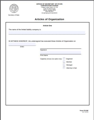 state of georgia articles of organization form