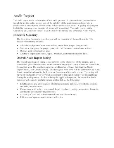audit report 1 1