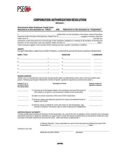 business corporation authorization resolution form