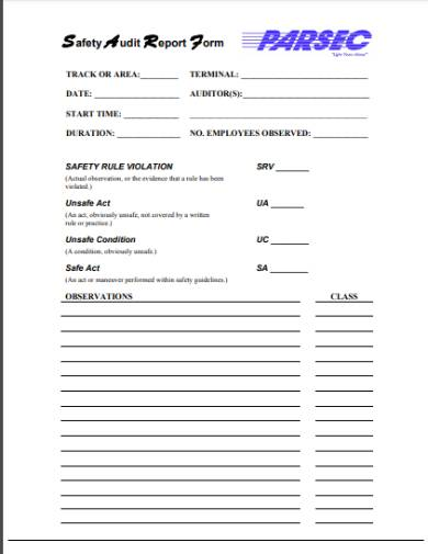 generic safety audit report form