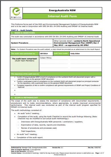 internal audit form sample