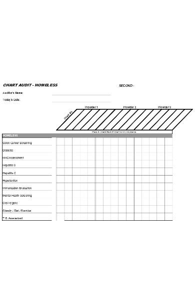 internal chart audit form