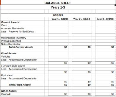 multi year balance sheet form