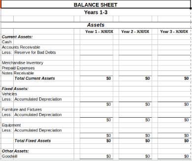 multi year balance sheet form