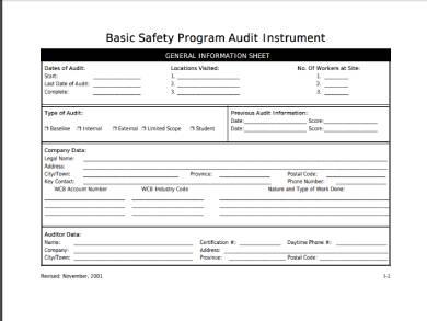 safety program audit instrument form