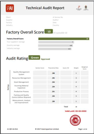 technical audit report form